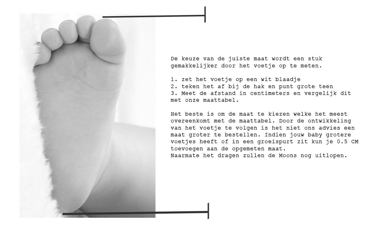 size-nederlands